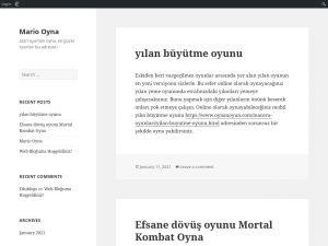 https://oynaxoyun.edublogs.org